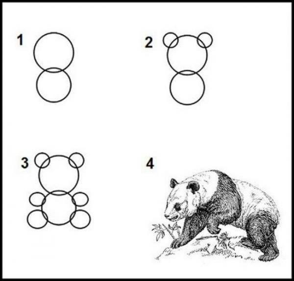 Dessiner un panda facilement images marrantes - Panda a dessiner ...